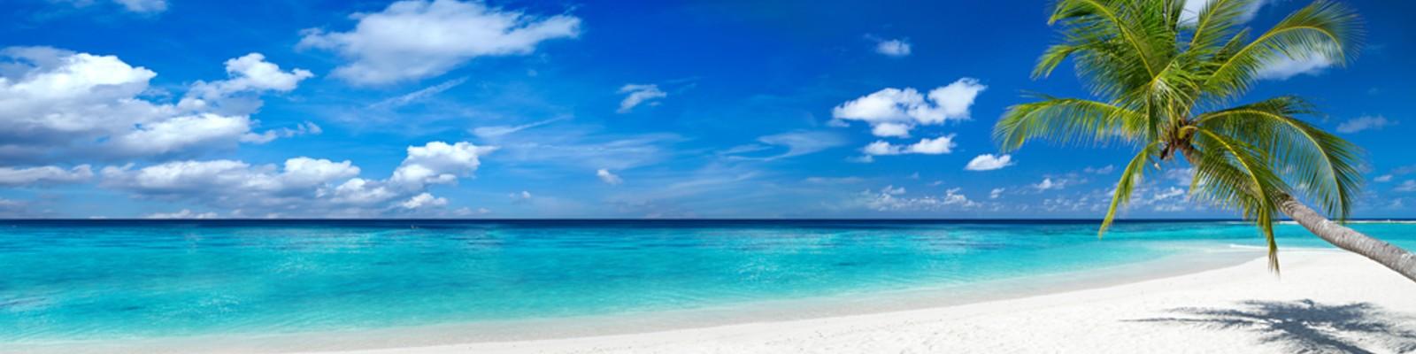 wszystko, czego potrzebujesz na plażę