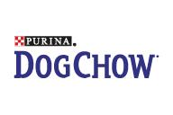 Собака Чоу