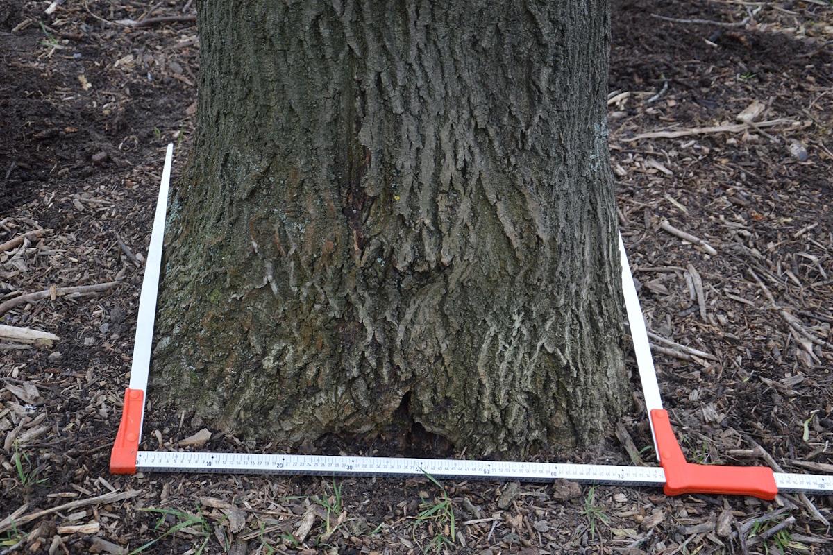 stromové meranie