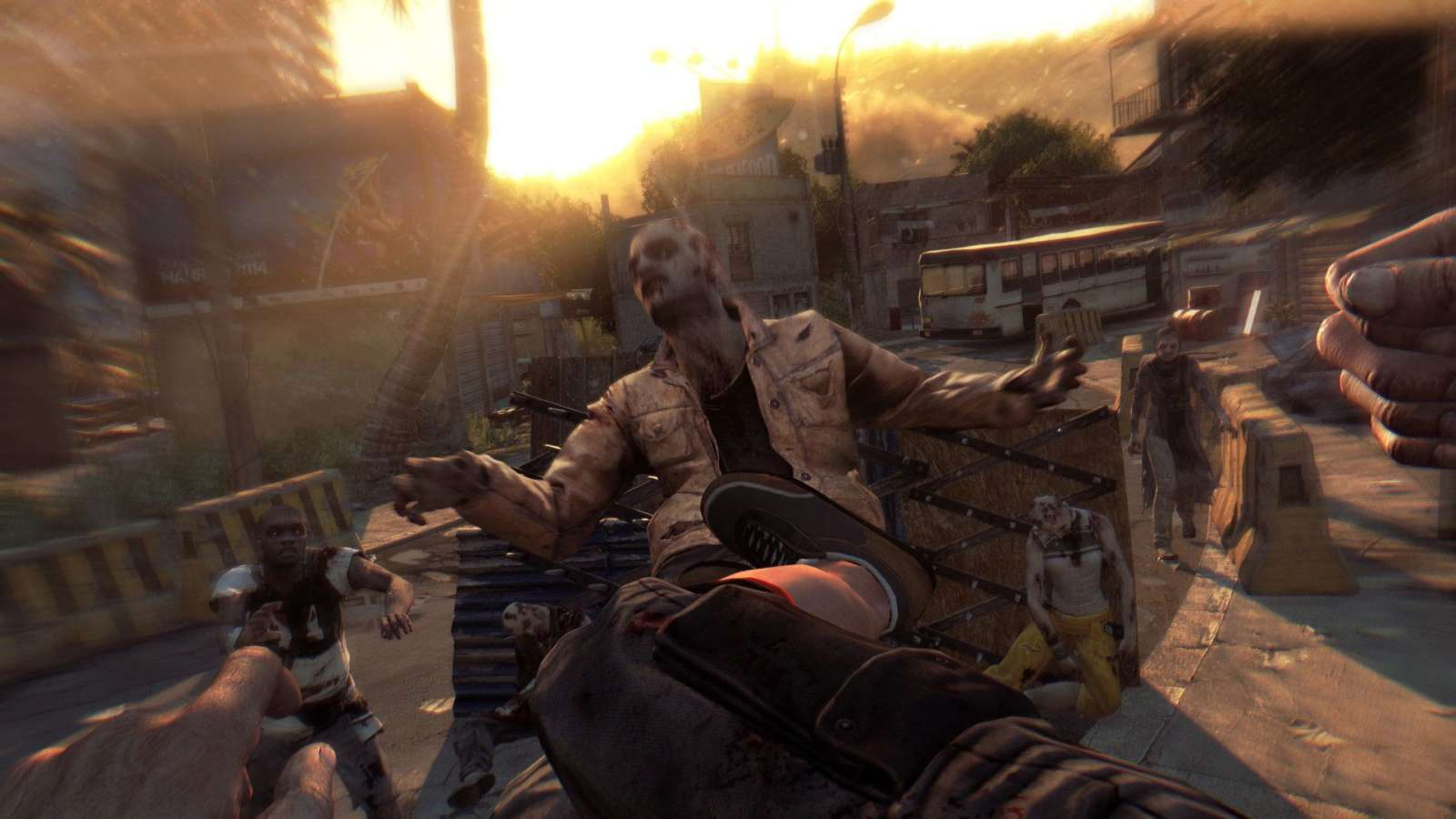 dying-light-the-following-7.jpg