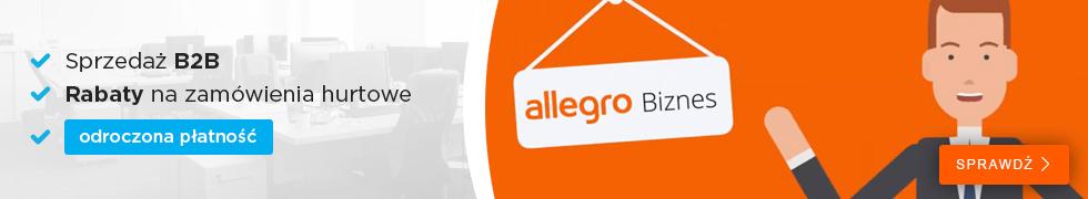 Allegro Biznes